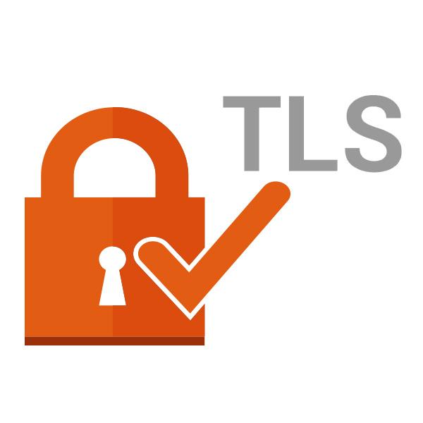 پشتیبانی از پروتکل امنیتی TLS